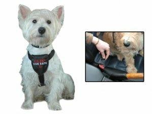 Hondenautogordel Clix Car Safe S