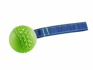 Speelgoed hond TPR bal met touw Green Apple 6,3cm