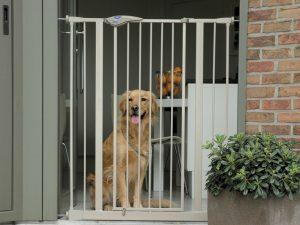 Dog Barrier Door 75cm verlenging 7cm