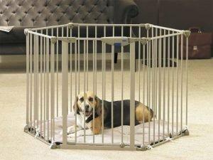 Dog Park De Luxe met kussenc62x75cm (6p)
