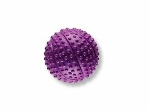 Speelgoed hond rubber basketbal paars Ø5,5cm