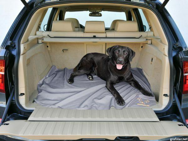 Bodyguard Dog Blanket Black