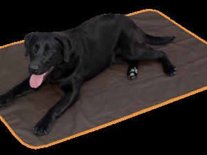 Bodyguard Dog Blanket Brown