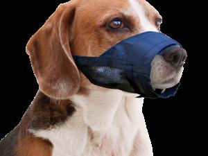 Pawise Muzzle Adjustable L