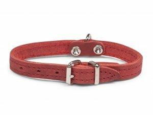 Halsband geolied leder rood 27cmx12mm XXS