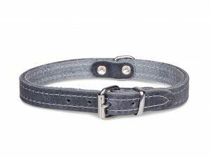 Halsband geolied leder grijs 32cmx12mm XS