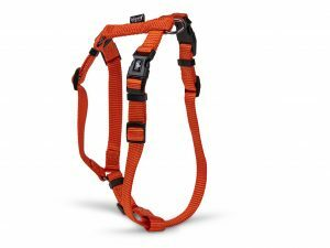 H-Harnas Classic Nylon oranje 26-41cmx15mm S