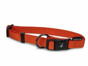 Halsband Classic Nylon oranje 14-21cmx10mm XS