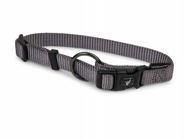 Halsband Classic Nylon taupe 40-57cmx20mm L